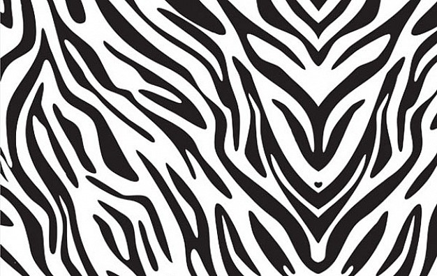 7 Animal Print Folder Icons Images