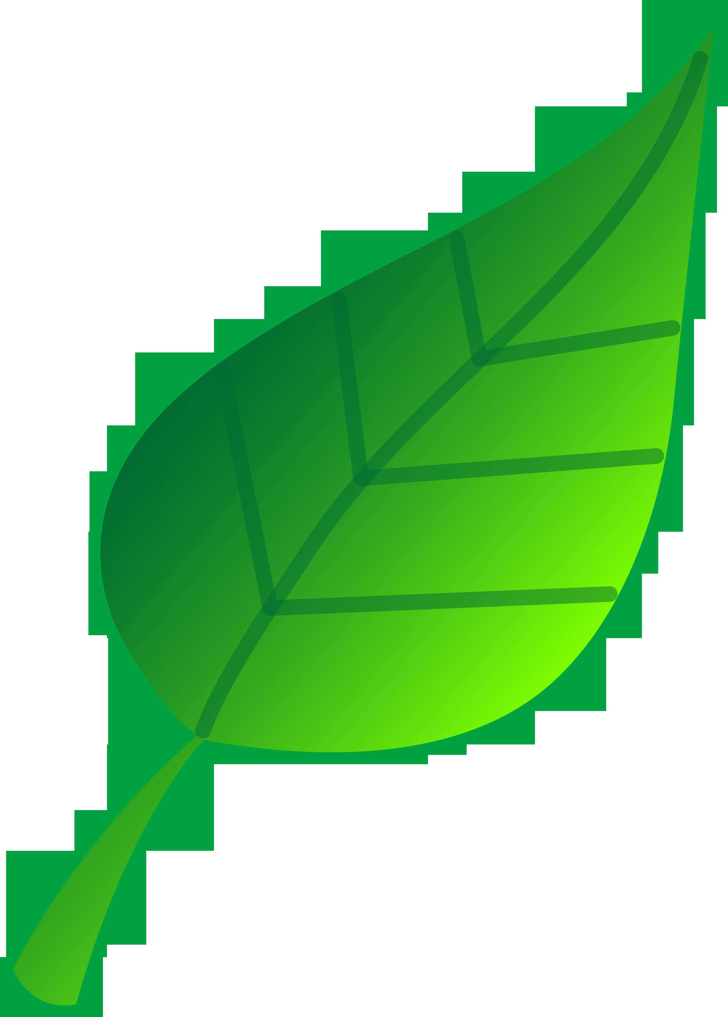 15 Leaf Design Clip Art Images