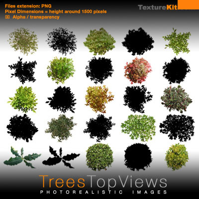 Photoshop Trees Plan View