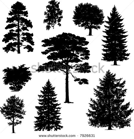 Pine Tree Silhouette Vector
