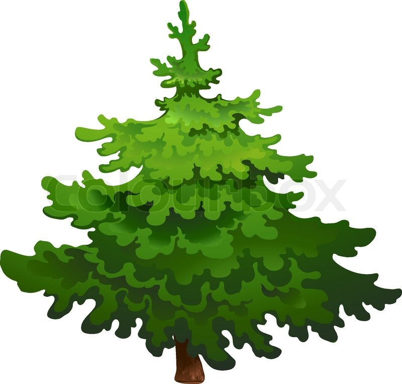 Pine Tree Vector Transparent