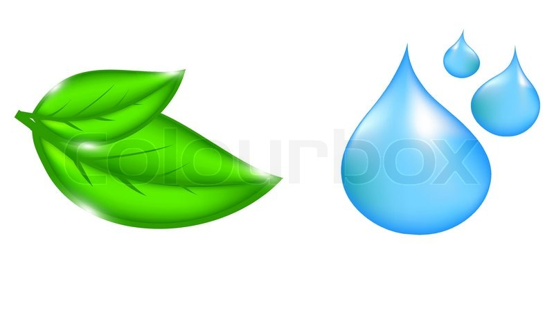 Plant with Water Drop Icon