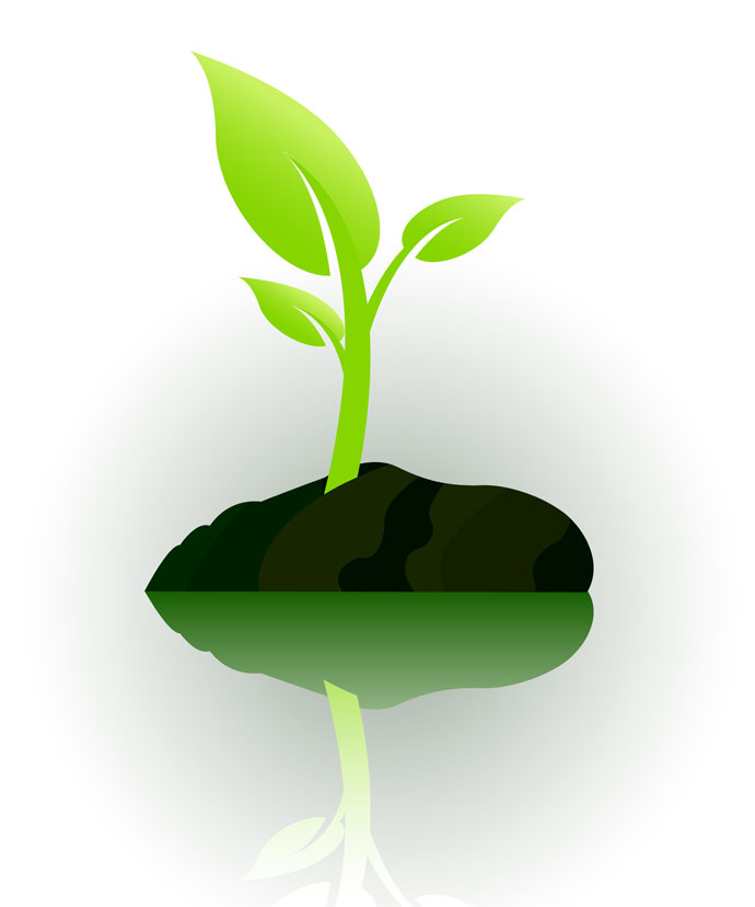 19 Vector Graphic Of A Plant Images