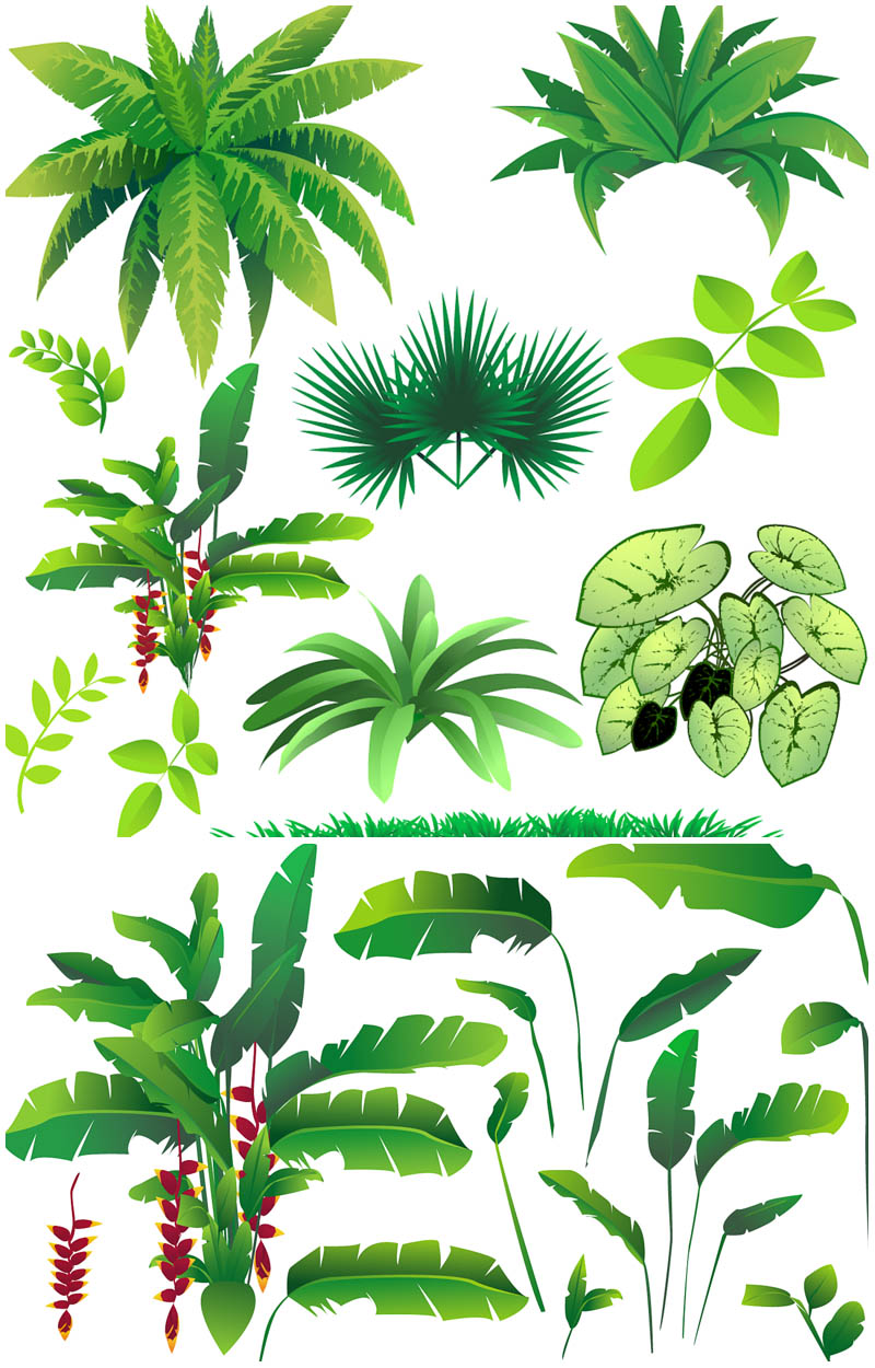 Jungle Plants Clip Art