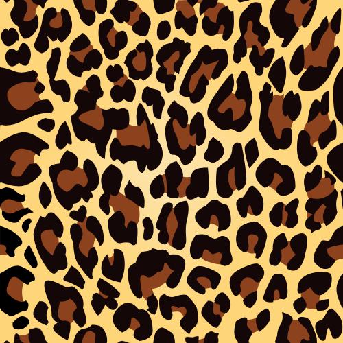 Leopard Print Pattern Texture