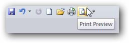 Microsoft Word Print Icon