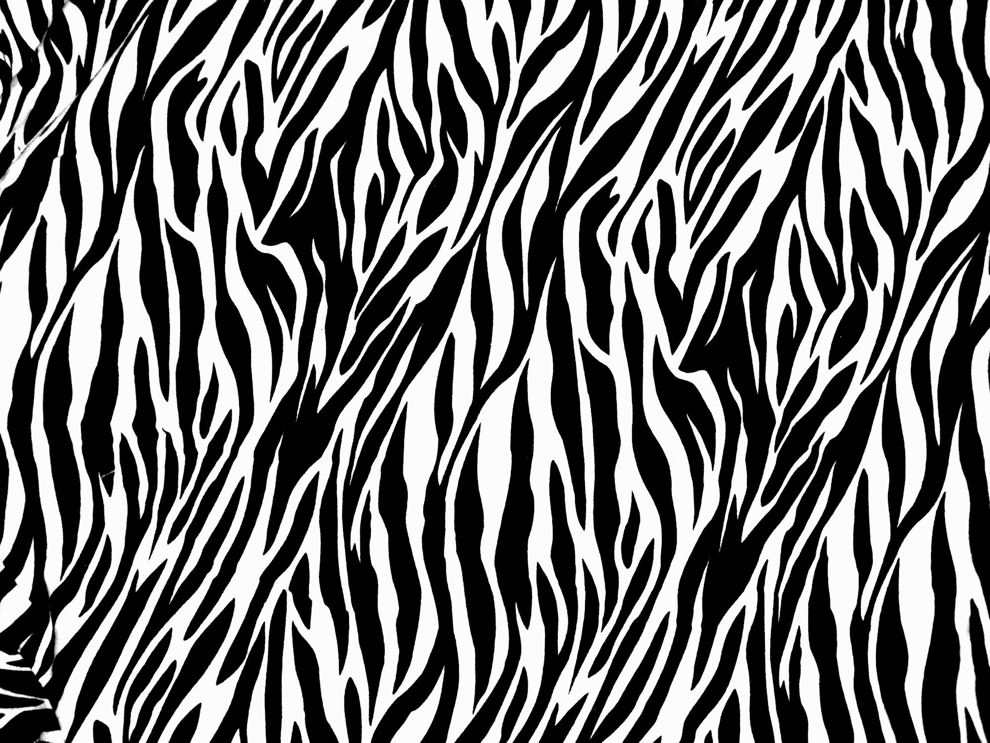 Zebra Print Pattern
