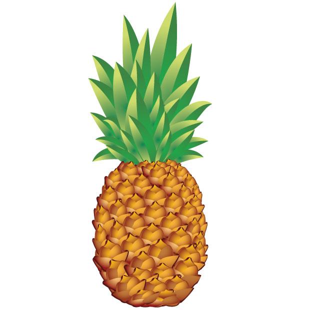 Free Pineapple Vector Graphic Design
