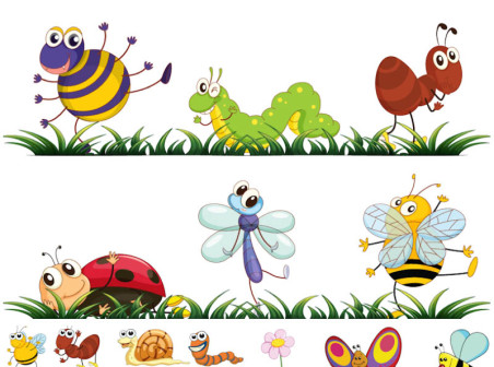 Vector Insect Cartoon