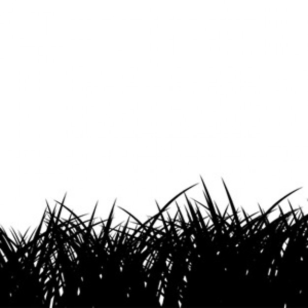 14 Sky And Grass Silhouette Vector Images