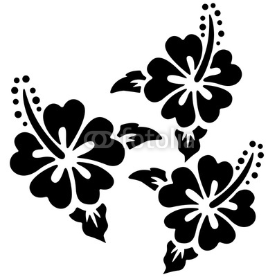 Hawaiian Hibiscus Flower Vector Art