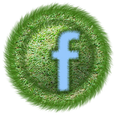 Official Facebook Logo Icon