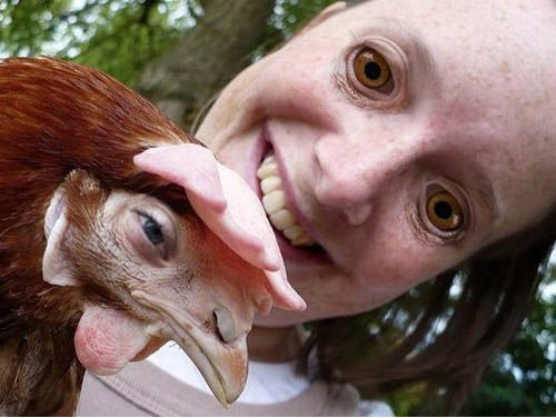 Chicken and Girl Face Swap
