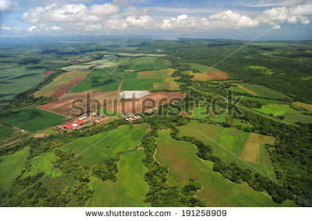 Farm Fields Aerial View