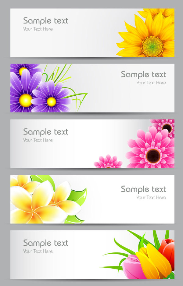12 Flower Banner Vector Images