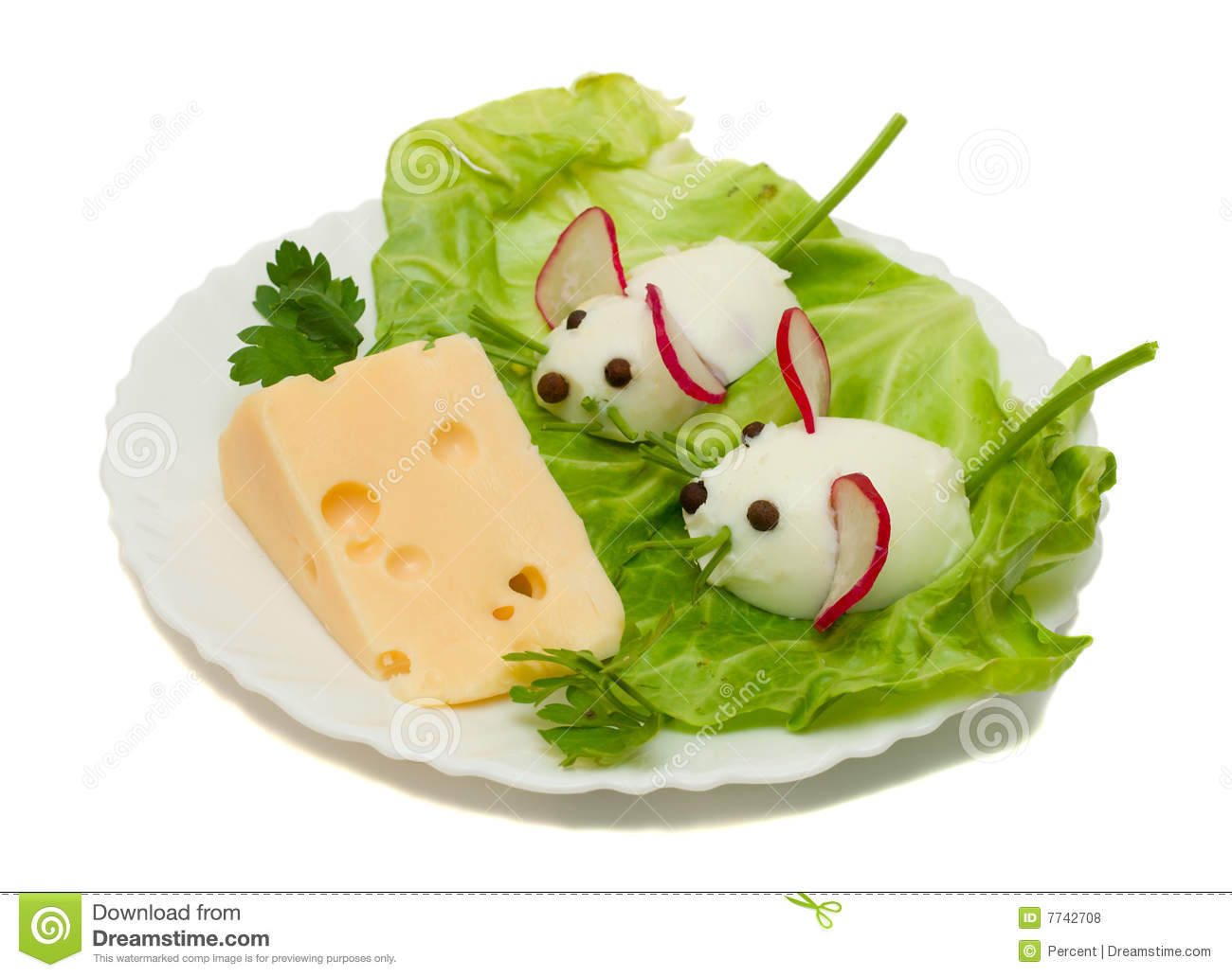 Funny Mouse Cheese