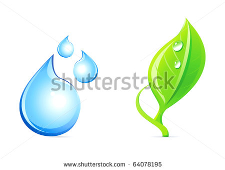 Leaf and Water Plant Icon
