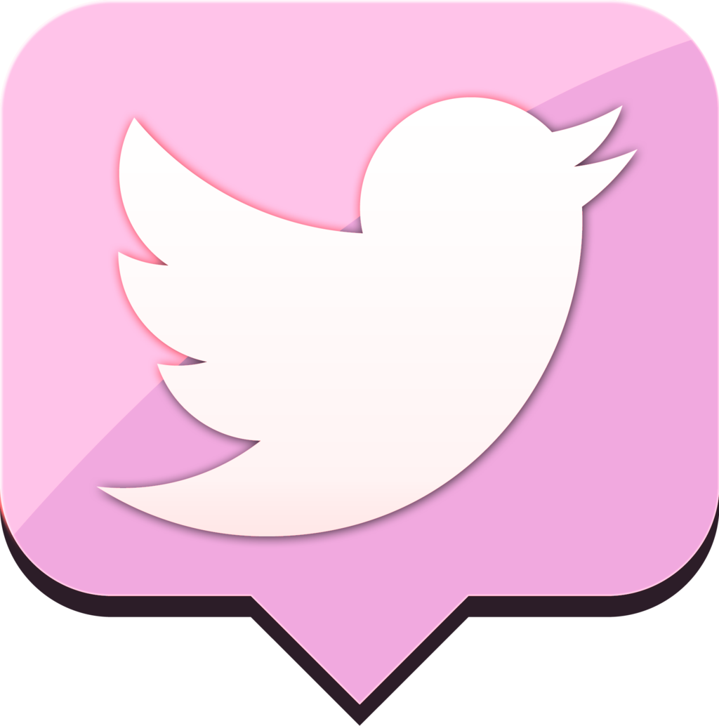 Pink Twitter Instagram Icons