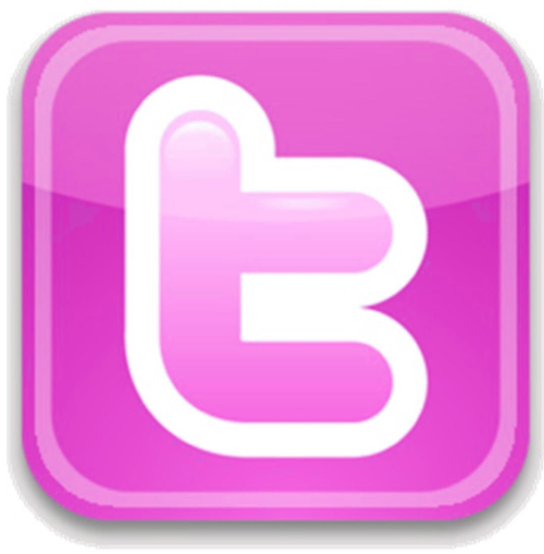 5 Pink Twitter Icon Images