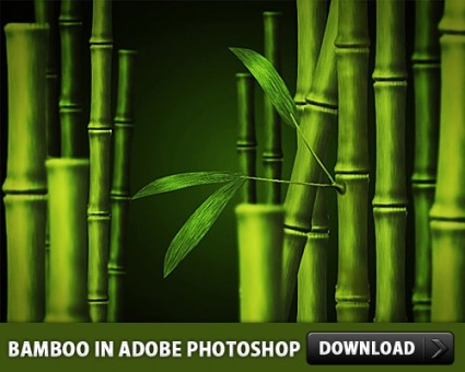 Adobe Photoshop PSD Files Free Download