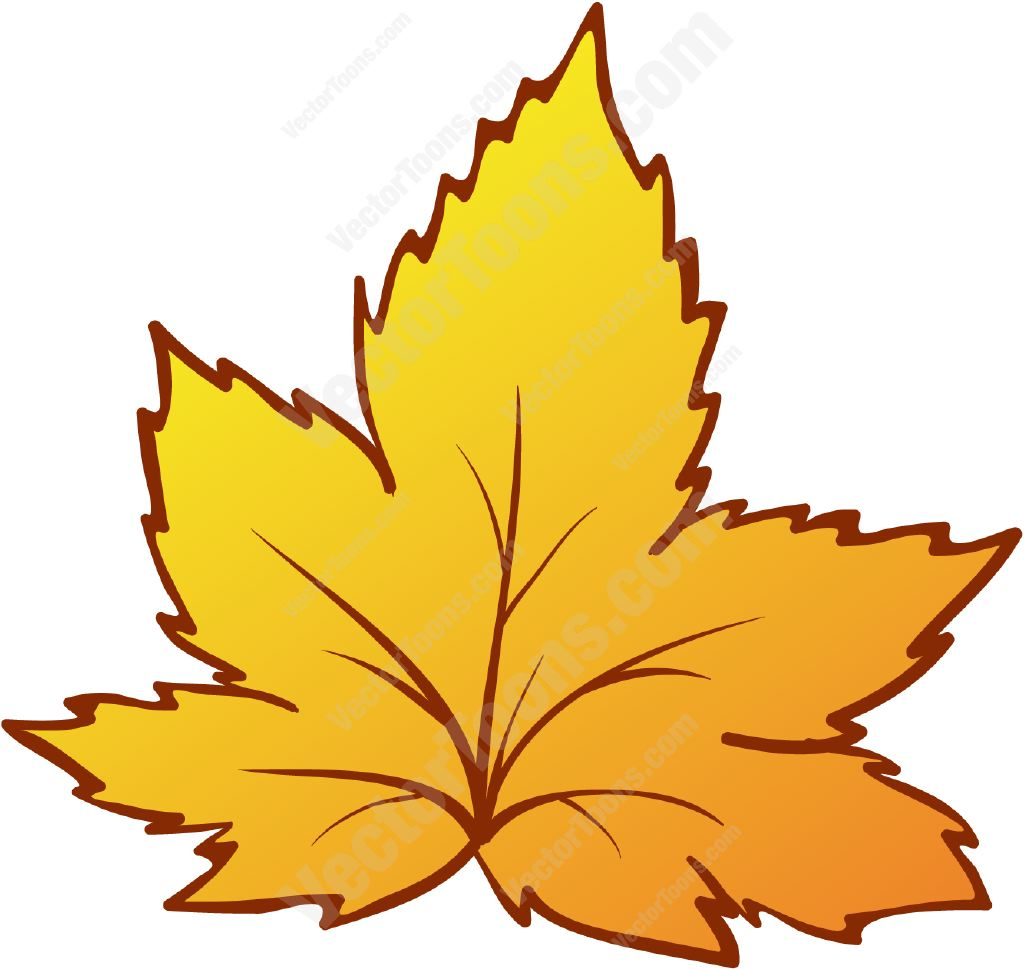 16 Yellow Leaf Fall Vector Images