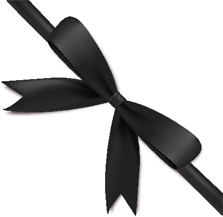 Black Ribbon Bow Vector