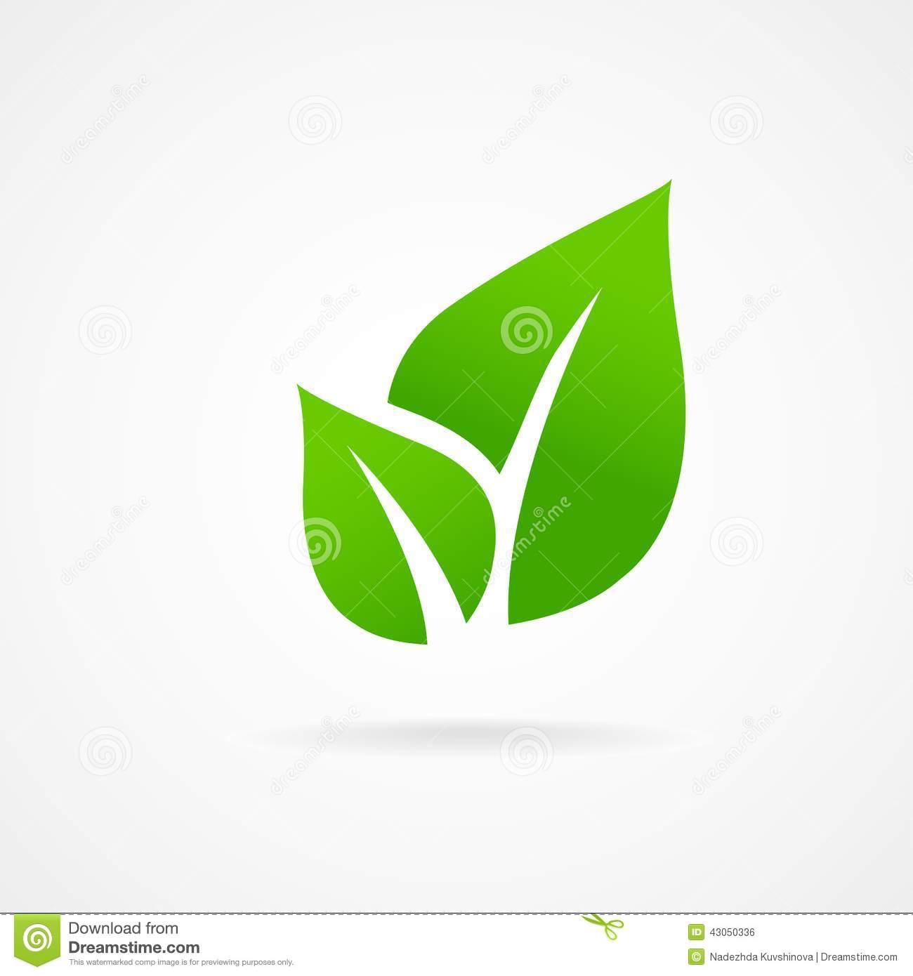 Eco Green Leaf Icon Illustration