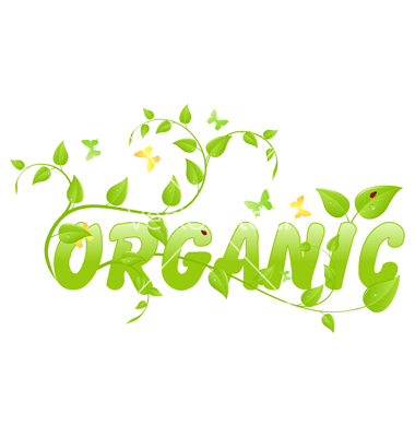 15 Organic Vector Art Images