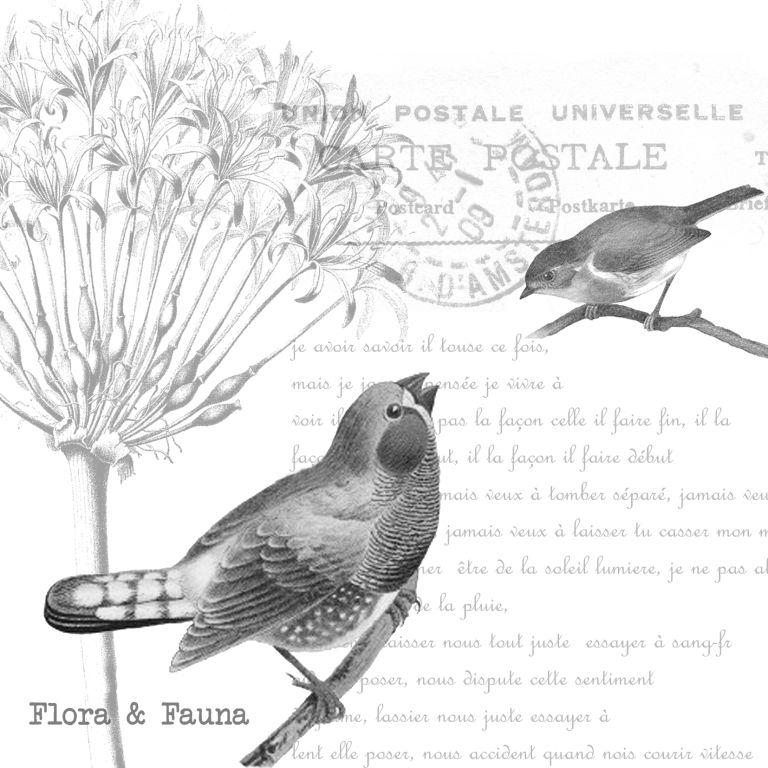 Vintage Bird Art Black And White 15 Bird Black And Whit...