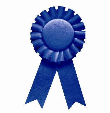 11 Blue Ribbon Icon Images