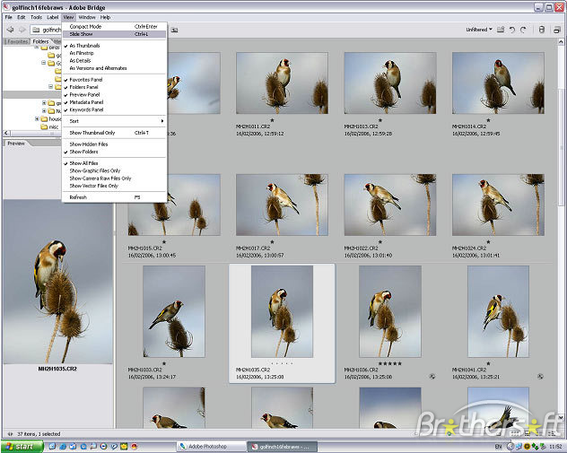 16 Adobe Photoshop 9.0 Free Download Images