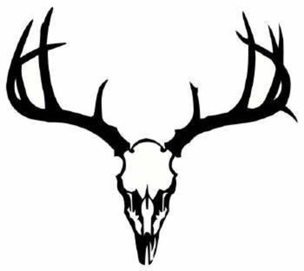 17 Vector Deer Skull Images