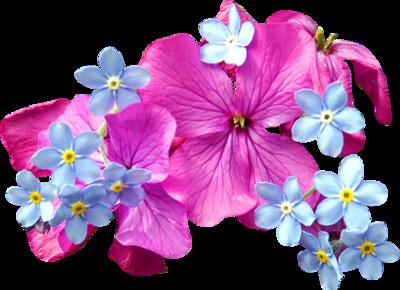 Spring Flower PSD