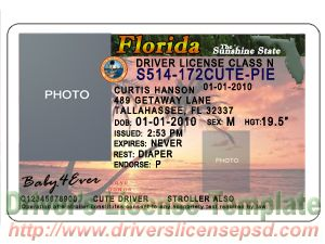 7 Florida Driver License PSD Template Images
