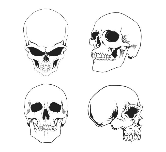 Free Skull Vector Art