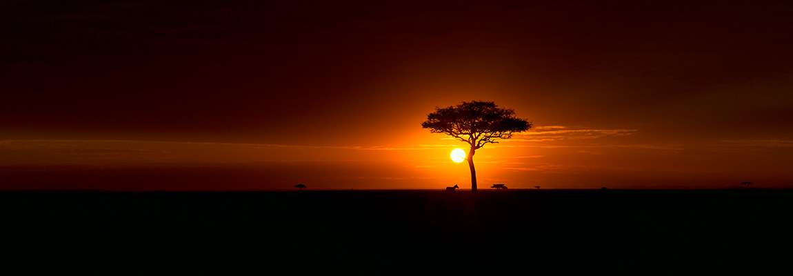 African Wildlife Photography Landscapes