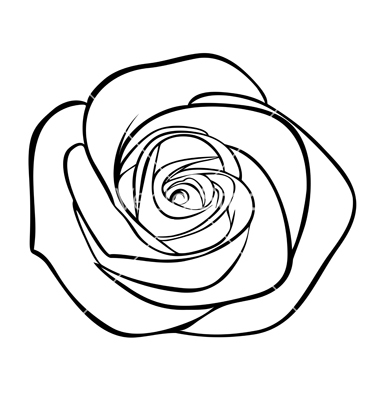 12 Free Rose Outline Vectors Images