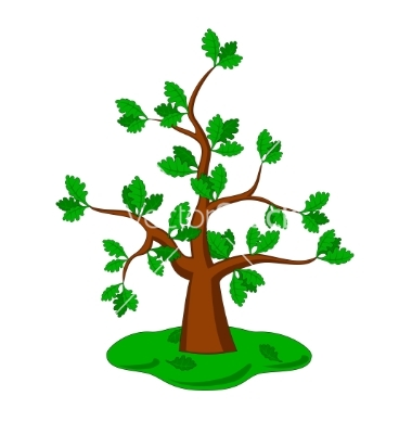 Free Vector Oak Tree