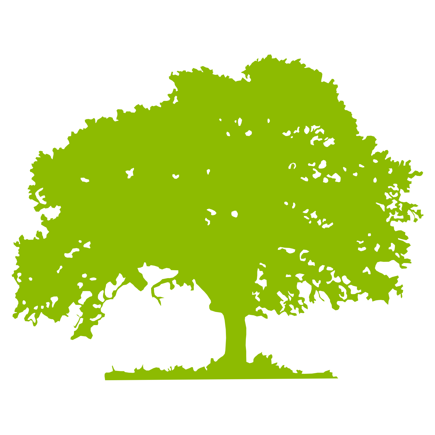 Oak Tree Silhouette Vector Free