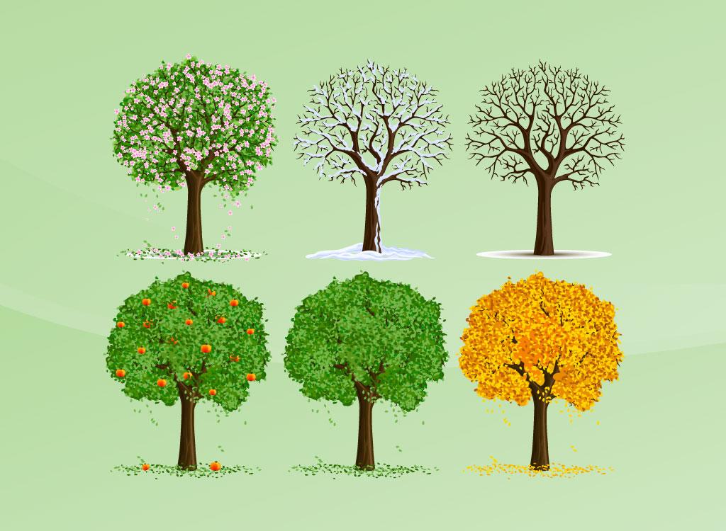 Vector Illustration Tree: 14 Nature Summer Tree Vector Images