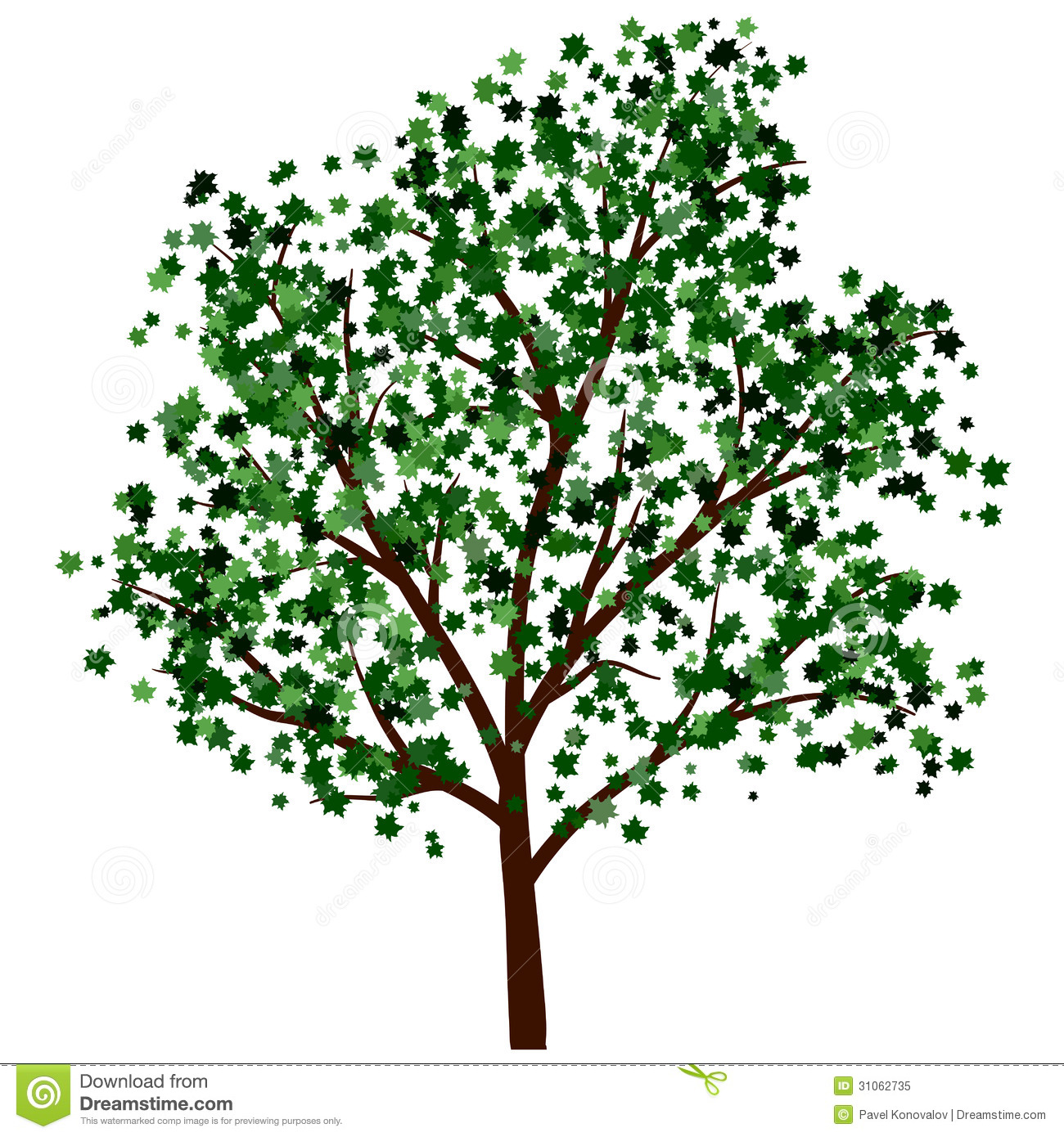 Summer Tree Illustration