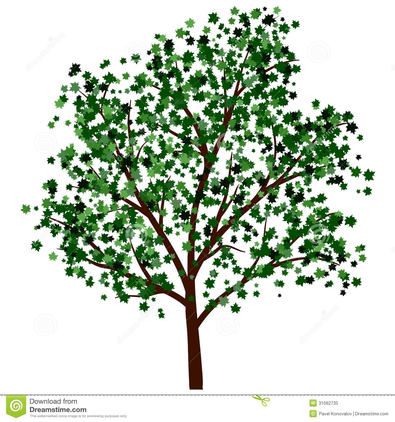 Summer Tree Illustration
