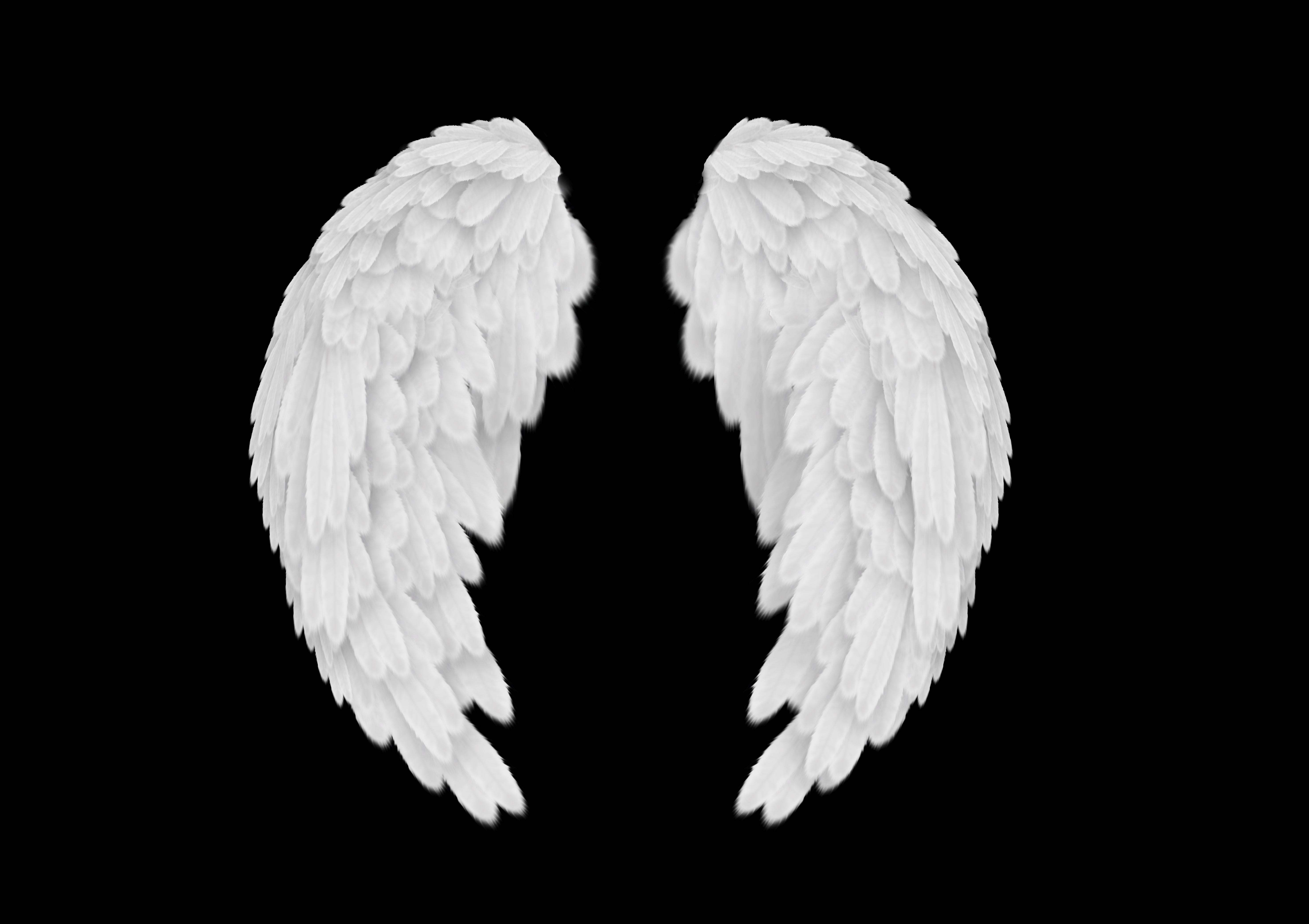 18 Fallen Angel Wing PSD Images