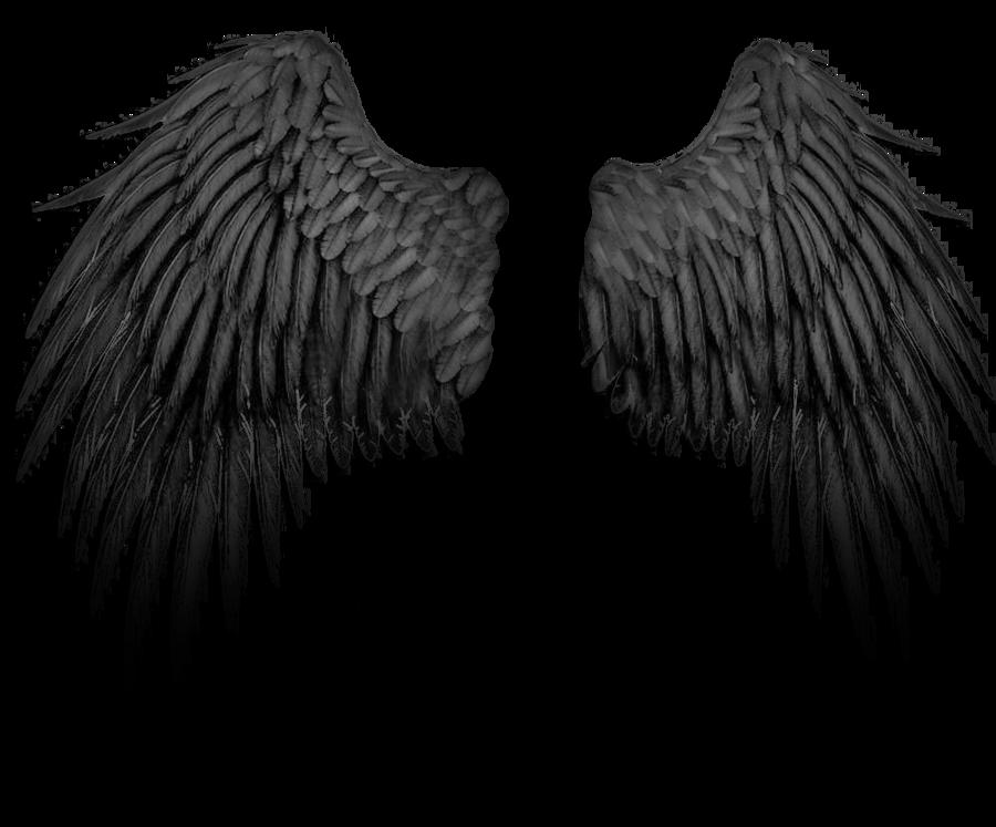 angel wings psd - photo #15