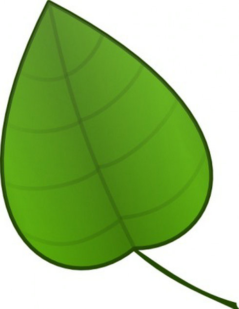 Cartoon Leaves Clip Art HD