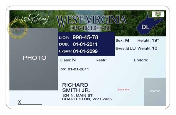 Driver License Template Photoshop