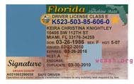 Florida State Drivers License Template
