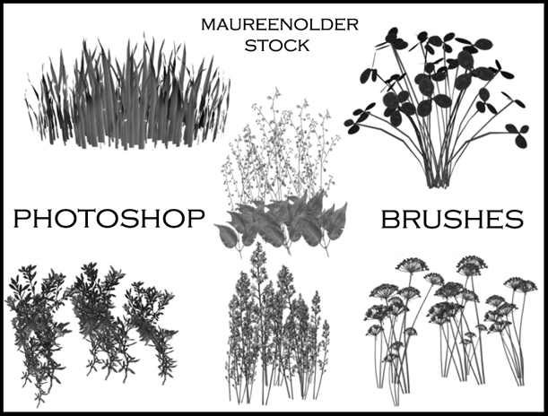 11 Photoshop Plant Brushes Images