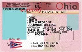 Ohio Driver's License Template