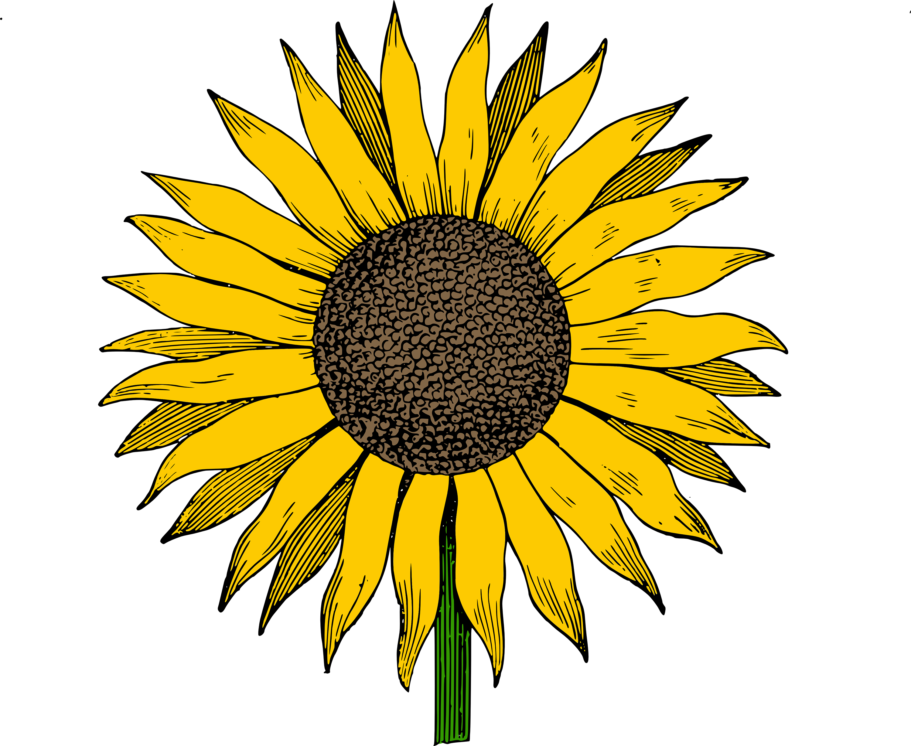 Free Printable Sunflower Clip Art